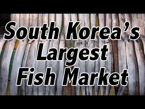 Eating Raw Fish in South Korea's Largest Fish Market