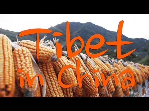 Staying in a 670 Year Old House: Tibet in China