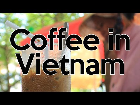 The Truth About Coffee in Vietnam