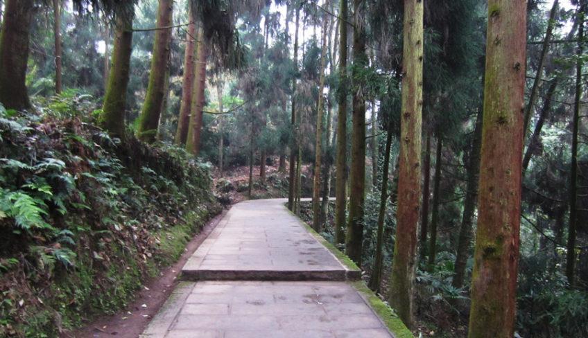 Emei mountain hiking trail